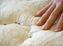 identify_bed