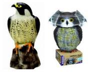 owl & falcon decoy