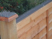 prickle-strip-cat-dog-bird-squirrel-repeller-repellent-spikes-1.8mtr-6ft--1099-p[ekm]200x150[ekm]